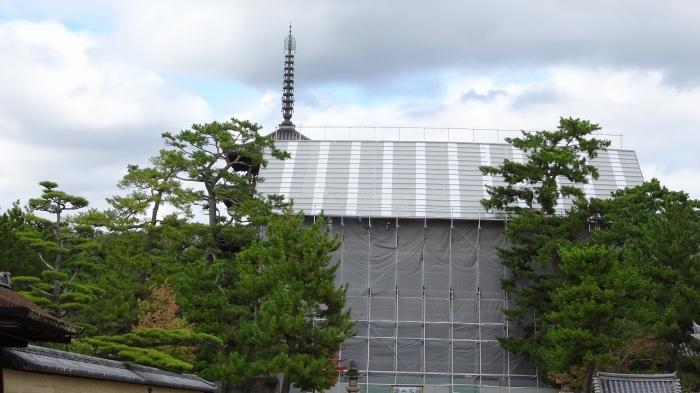奈良観光 (12)