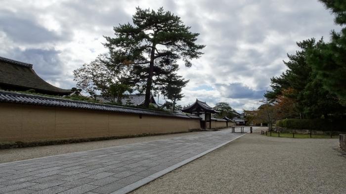 奈良観光 (13)