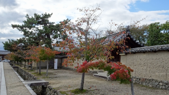 奈良観光 (17)