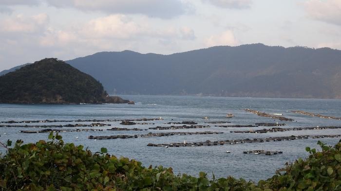 三方五湖 (11)