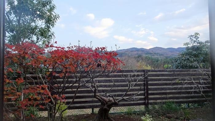 大見山荘施設 (10)