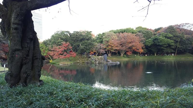 D2116koraku05.jpg