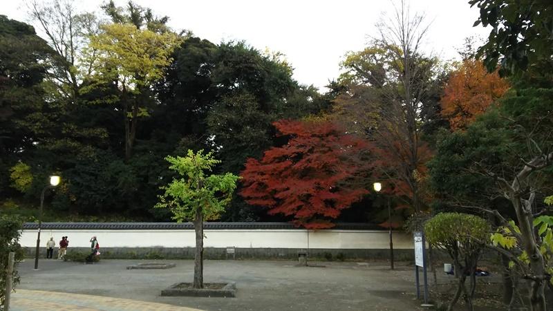 D2116koraku34.jpg