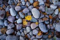 stones-1721025_960_720_convert_20170201124950.jpg