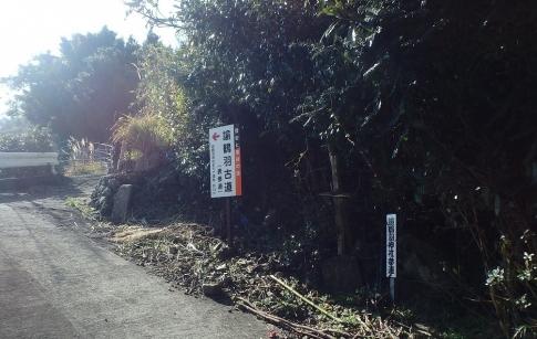 淡路島・諭鶴羽山 001-001