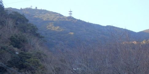 淡路島・諭鶴羽山 105-001