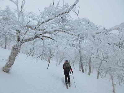 藻琴山冬1