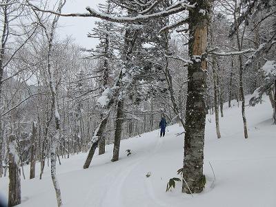 藻琴山冬4