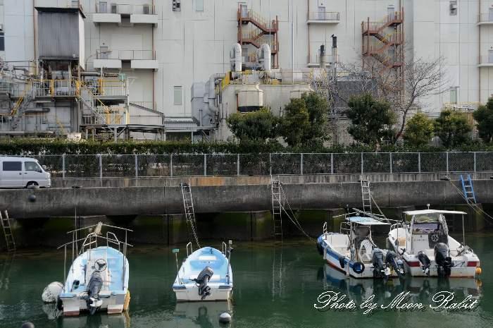 御舟川河口の小舟 愛媛県西条市西ひうち