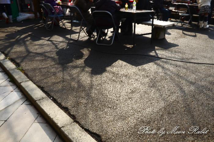 影 はまさいフェスティバル