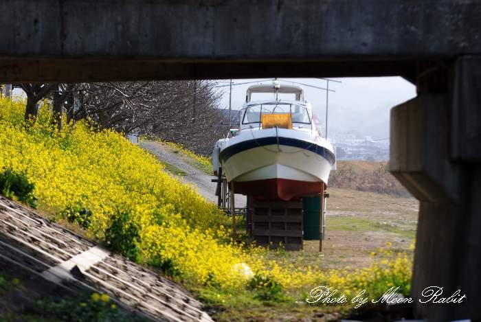 陸揚げされた舟 新兵衛橋