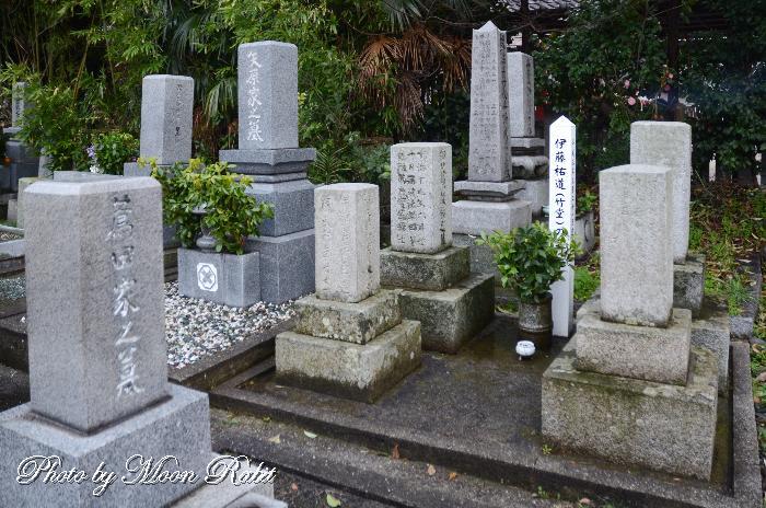 西条藩校択善堂教官 伊藤祐道(竹堂)の墓