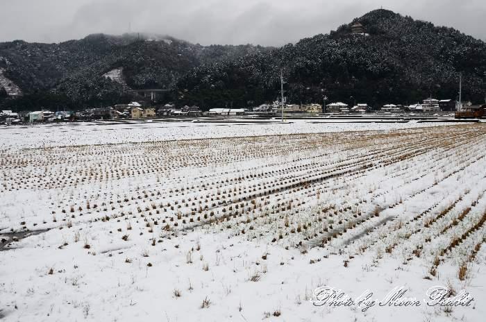 福武新田の雪景色