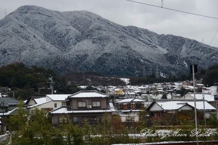ファミリーハイツの雪