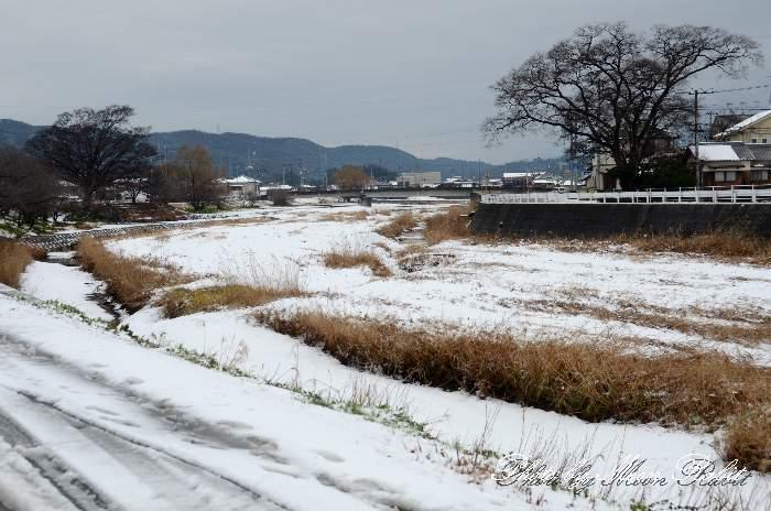 渦井川堤防の積雪