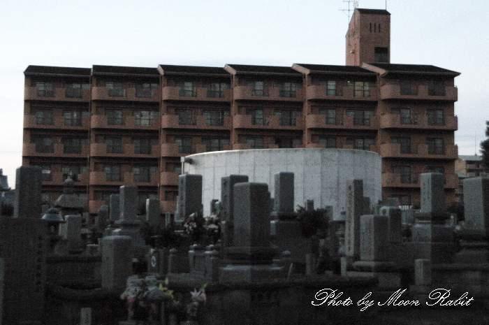 墓標とビル 大通寺とひめぎん西条コーポラス 西条市上神拝