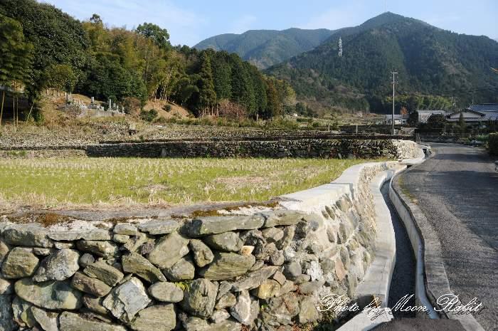 早川の石積みの段々畑