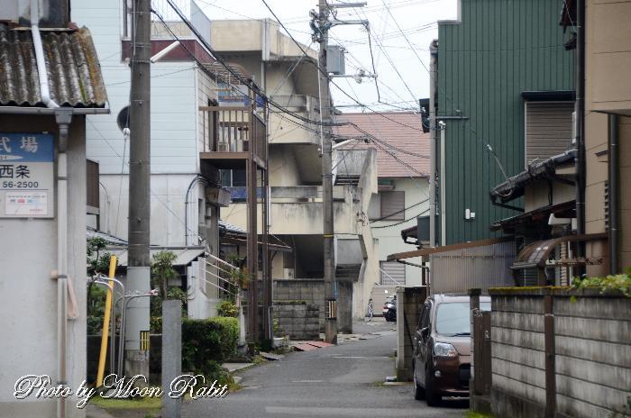 横黒の小道 愛媛県西条市
