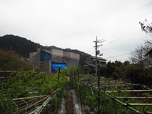 2016-11-21-15.jpg