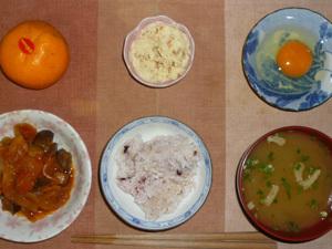 胚芽押麦入り五穀米,玉子,茄子と玉葱のトマト煮込み,油揚げとほうれん草のみそ汁,マッシュポテト,みかん