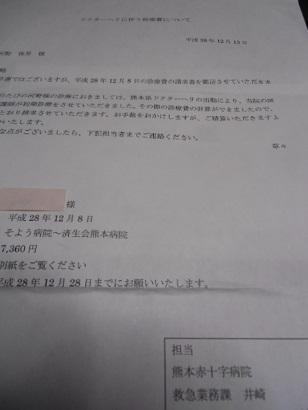 CIMG8865.jpg
