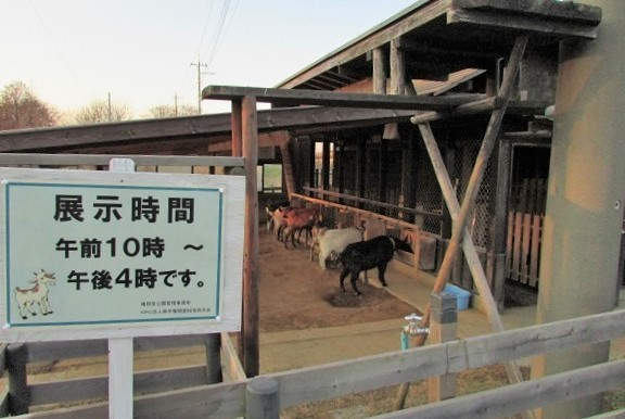gongendou170107-110.jpg