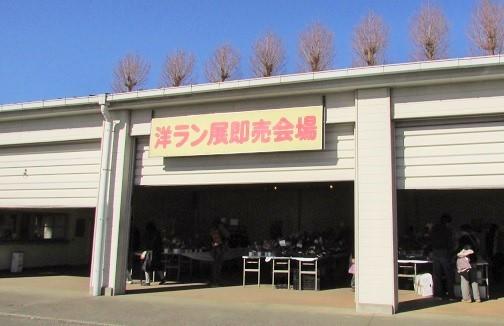 oosaki170204-110.jpg