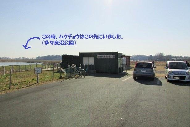 tataranuma170107-106.jpg