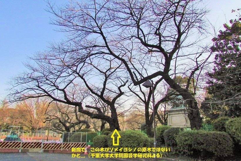 ueno170102-110.jpg