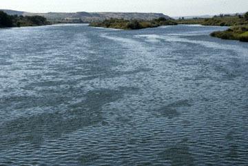 blog TAKE 103 Canyon County, Snake River, ID_DSC0042-9.9.07.jpg