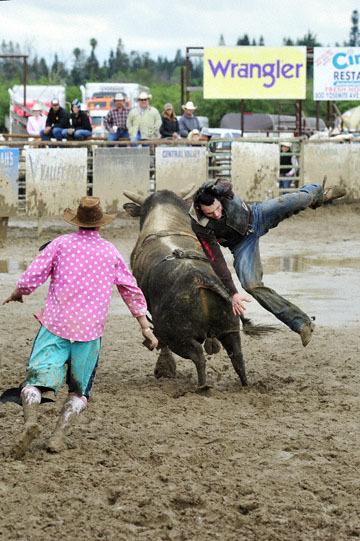 blog 24 D3S Oakdale Rodeo, Bull Riding 2-15 RR, Steve L. Carter (NS Lakeside, CA) 2_DSC6112-4.10.16.(2).jpg