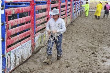 blog 24 D3S Oakdale Rodeo, Bull Riding 2-15 RR, Staff_DSC6101-4.10.16.(1).jpg