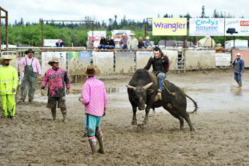 blog 24 D3S Oakdale Rodeo, Bull Riding 2-15 RR, Steve L. Carter (NS Lakeside, CA)_DSC6109-4.10.16.(2).jpg