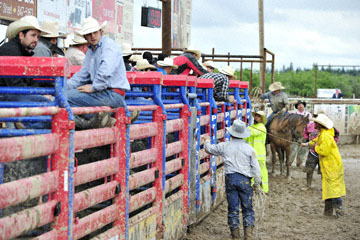 blog 24 D3S Oakdale Rodeo, Bull Riding 2-15 RR, Steve L. Carter (NS Lakeside, CA)_DSC6103-4.10.16.(2).jpg
