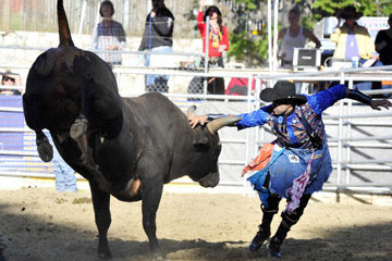 blog (6x4@300) Yoko 35 Gold Coutry Rodeo, Bull Riding 4, Jordan Spears (NS Harris Ranch)_DSC7911-4.23.16.(1).jpg