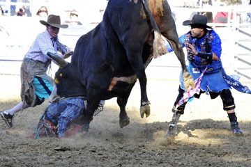 blog (6x4@300) Yoko 35 Gold Coutry Rodeo, Bull Riding 4, Jordan Spears (NS Harris Ranch)_DSC7908-4.23.16.(1).jpg