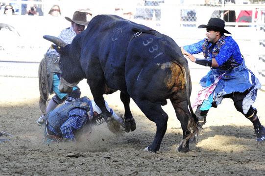 blog (6x4@300) 35 Gold Coutry Rodeo, Bull Riding 4, Jordan Spears (NS Harris Ranch)_DSC7907-4.23.16.(1).jpg