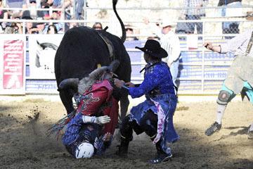 blog (6x4@300) Yoko 35 Gold Country Rodeo, Bull Riding 4, Jordan Spears (NS Harris Ranch)_DSC7898-4.23.16.(1).jpg