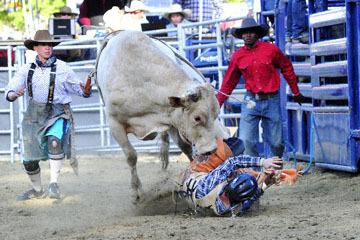 blog (6x4@300) Yoko 36 Gold Coutry Rodeo, Bull Riding 16, Garrett Smith (NS Mellow Yellow)_DSC8143-4.23.16.(2).jpg