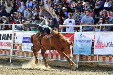 blog (6x4@300) Yoko 39 D3S Gold Country Rodeo, Bareback Bronco 9-RR, Tyler Scales (70)_DSC8850-4.24.16.(2).jpg
