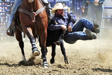 blog (6x4@300) Yoko 39 D3S Gold Country Rodeo, Steer Wrestling 5, Josh Garner (6.6) 2_DSC8803-4.24.16.(2).jpg