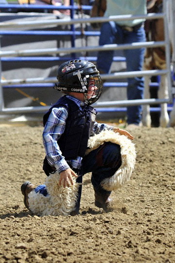 blog (4x6@300) Yoko 38 D3S Gold Country Rodeo, Mutton Busting 15 (#) 2_DSC8488-4.24.16.(1).jpg