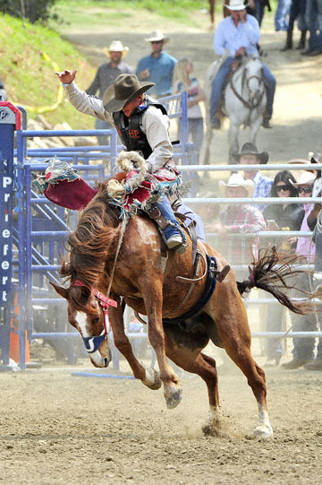 blog (4x6@300) Yoko 39 D3S Gold Country Rodeo, Saddle Bronco 5, Cody Wright (72