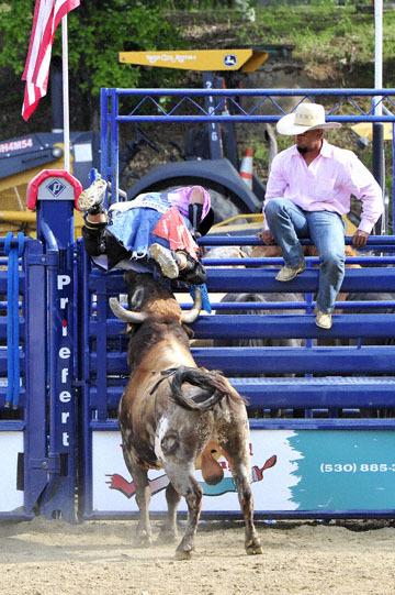 blog (4x6@300) Yoko 40 D3S Gold Country Rodeo, Les Schwab Fighting Bull Ring Toss 2_DSC9756-4.24.16.(3).jpg