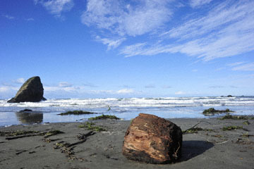 blog 191 Seaside Beach, Mendocino Land Trust, CA_DSC4286-12.17.16.jpg