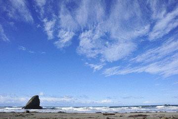 blog 191 Seaside Beach, Mendocino Land Trust, CA_DSC4284-12.17.16.jpg