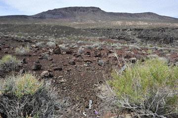 blog 12 Death Valley, Father Crowley's Point 190W, CA_DSC2394-4.6.16.(2).jpg