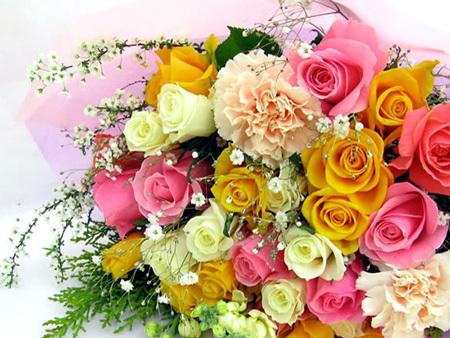 flores_001.jpg
