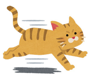run_cat.jpg