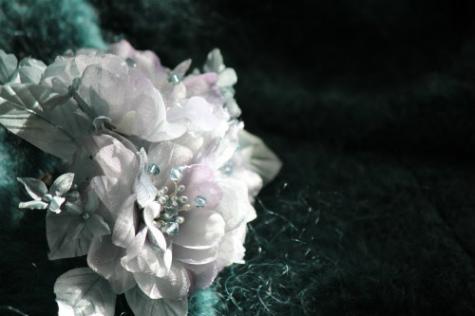 ブログtakako3